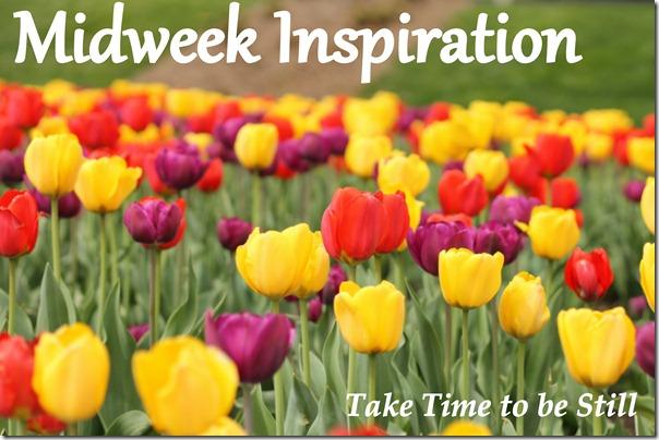 midweek inspiration